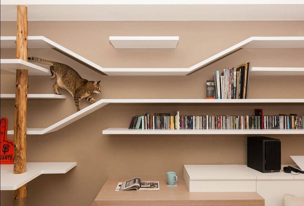一个你和猫咪都满意的客厅